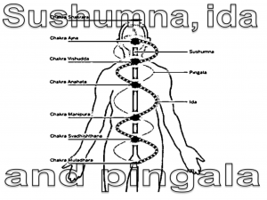 Sushumna-Ida-Pingala