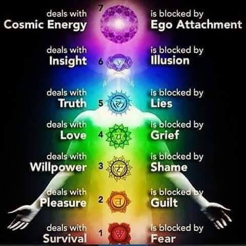 Image result for chakras and the human body